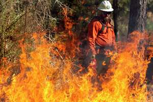 Jeff LaBlanc assists in a prescribed burn at Jones State Park, Tuesday, Jan. 7, 2020, in Conroe. The control burn reduce vegetation and potential for devastating wildlife and restore forest ecological habitat for the endangered Red-cockaded woodpecker.