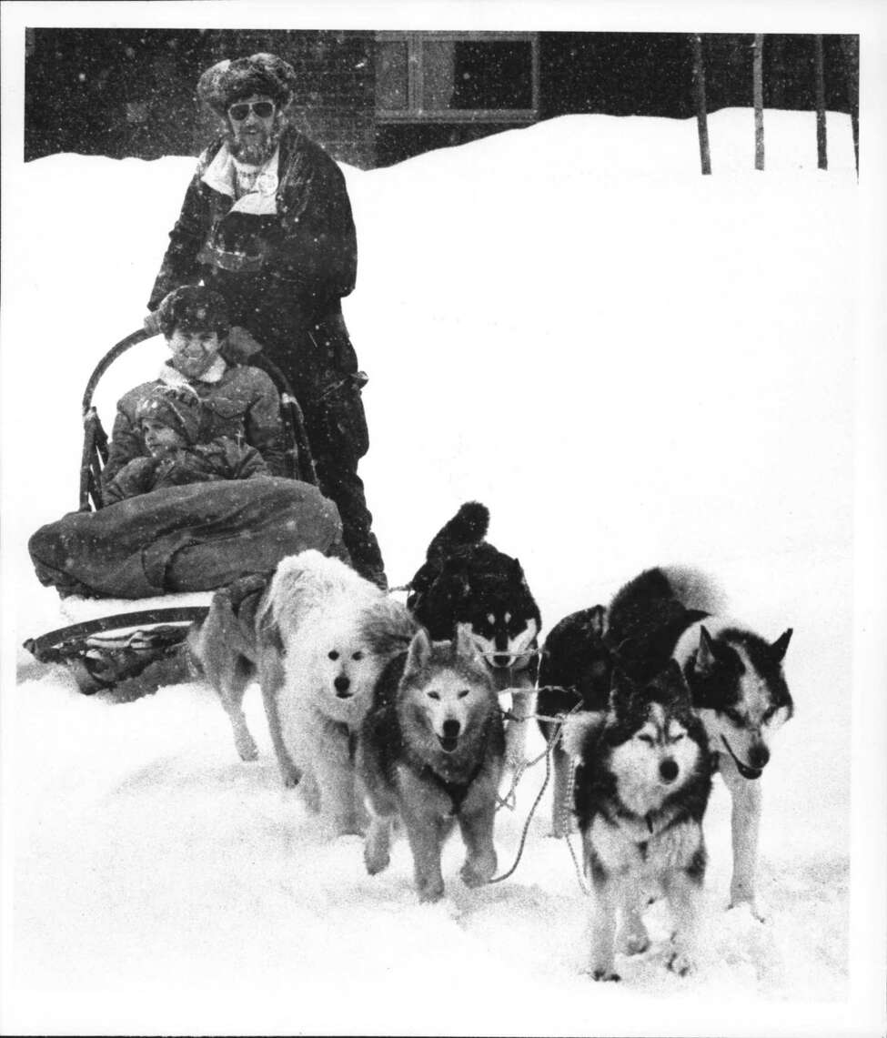 Clifton Commons, Clifton Park, New York - sled dog racing - Make Arnold gives Dana Wassenaar, and son Christopher Dana Wassenaar, 3, a ride on his dog sled. February 04, 1990 (Tom LaPoint/Times Union Archive)