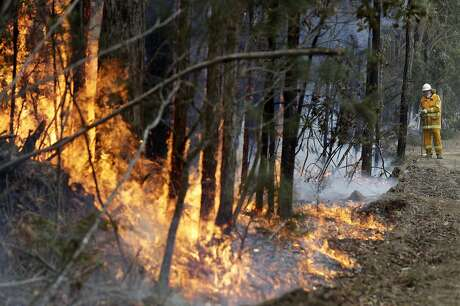 A firefighter manages a controlled burn near Tomerong, Australia, Wednesday, Jan. 8, 2020, set in an effort to contain a larger fire nearby. Around 2,300 firefighters in New South Wales state were making the most of relatively benign conditions by frantically consolidating containment lines around more than 110 blazes and patrolling for lightning strikes, state Rural Fire Service Commissioner Shane Fitzsimmons said. (AP Photo/Rick Rycroft)