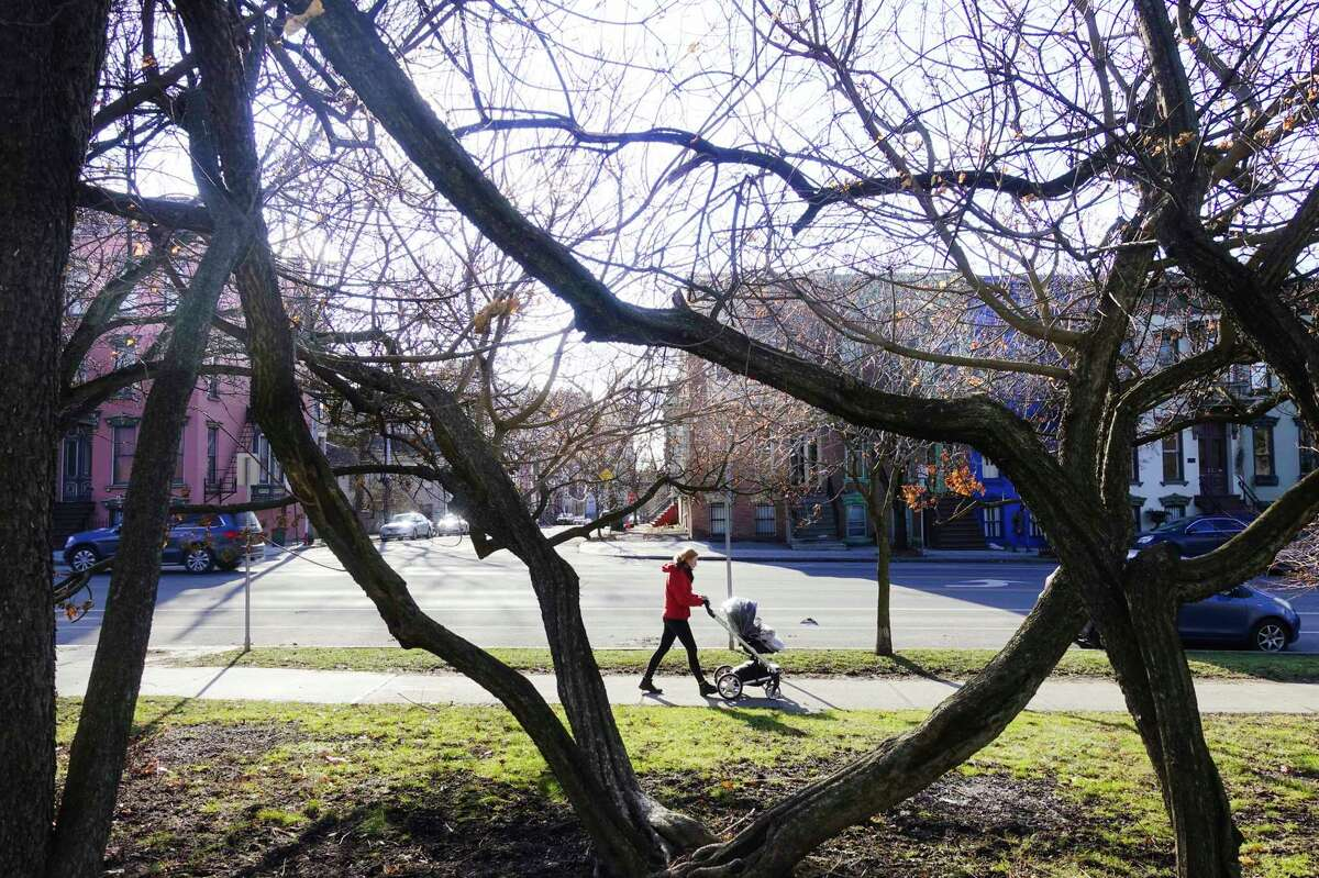 There will be plenty of sun to see through the budding trees on Saturday but snow is moving in for Sunday and Monday, Times Union meteorologist Jason Gough says. . (Paul Buckowski/Times Union)