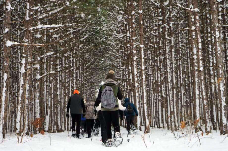 This is a scene from a previous Snowshoe Stampede to Stomp Out Cancer event. This year's event will be taking place on Feb. 1. Photo: News Advocate/File Photo