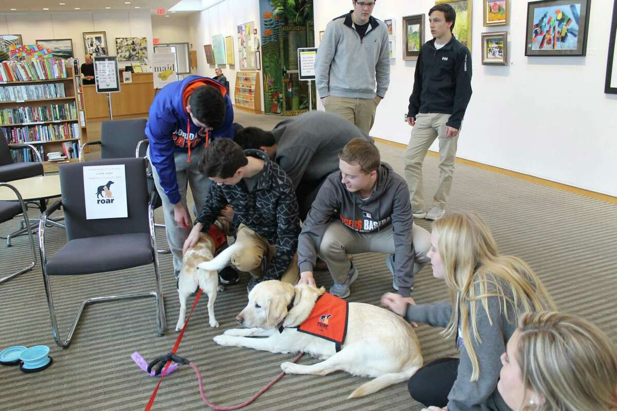 Lily and Raffi, pups from ROAR (Ridgefield Operation Animal Rescue), helped Wilton High School students de-stress during last year's midterm exam studies. This year, dogs from ROAR will visit the library on Wednesday, Jan. 22, from noon to 4 p.m. to provide some chill time for kids during their study breaks.