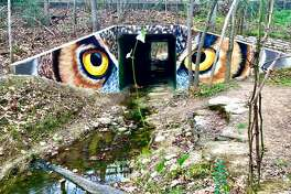 Muralist Anat Ronen has transformed the entrance to a tunnel along the Houston Arboretum & Nature Center's Ravine Trail with an homage to one of the park's most sought-after birds, the great horned owl.