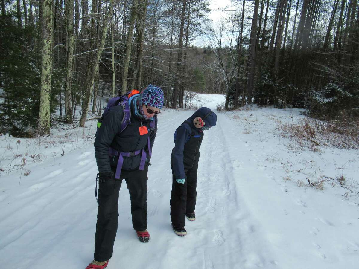 Outdoors writer Gillian Scott and her daughter check out animal prints on a road at the Capital District Wildlife Management Area near Cherry Plain State Park in Rensselaer County. (Herb Terns / Times Union)