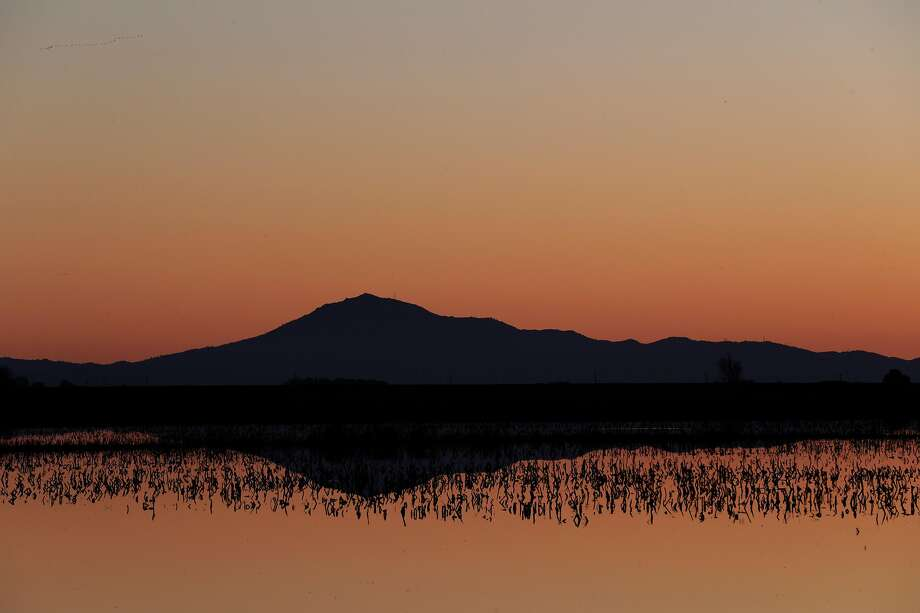 Mount Diablo is silhouetted against flooded farmland on Staten Island. Photo: Carlos Avila Gonzalez / The Chronicle