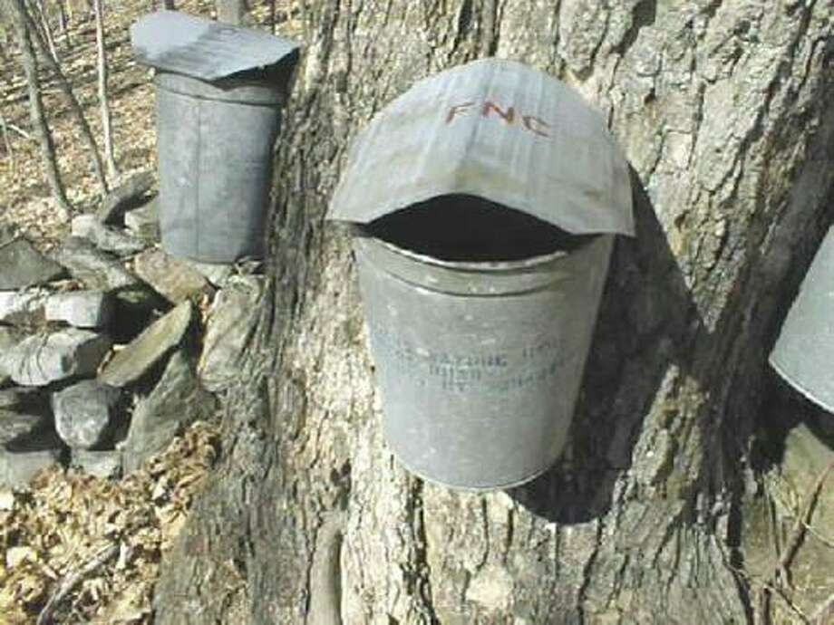 Sugaring information sessions are scheduled at Flanders Nature Center in Woodbury. Photo: Contributed Photo