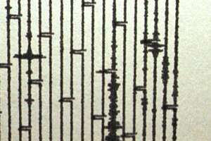 A seismograph at the New York State Museum in Albany, N.Y. shows an earthquake that shook northern New York early Thursday morning, April 20, 2000.  The quake measured 3.7 on the Richter scale.