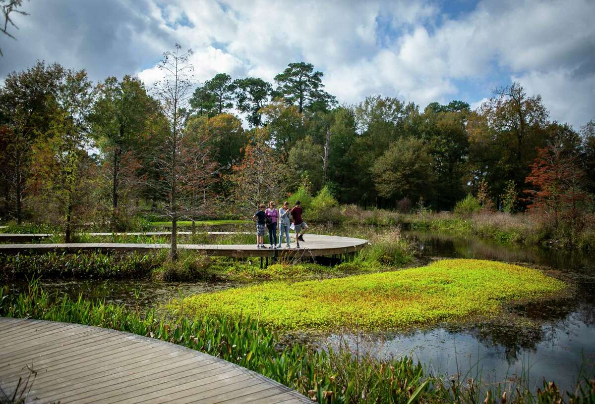 Angela Maloney stops to look at a group of turtles with her three children, Morgan, 15, Nathaniel, 13, and Matthew, 9, from a boardwalk trail at the Houston Arboretum, Monday, Nov. 25, 2019. The family took advantage of the weather and the Thanksgiving break from school to travel from their home in Dickinson to walk the trails at the arboretum on Monday.