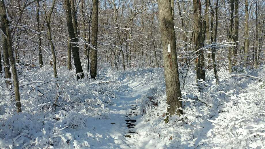 The Shelton Trails Committee will host a winter hike on Sunday, Jan. 19, from 1 to 3 p.m. Those attending can meet at the parking lot at the Nells Rock Trailhead (across from L'Hermitage condominiums), gps 160 Nells Rock Road. The trail is relatively flat and easy, though not stroller-friendly. Distance will depend on trail conditions. Children and leashed dogs are welcome. If weather is questionable, check the Shelton Trails blog at sheltontrailscom.blogspot.com/p/work-part.html for updates. For other questions, contact Val Gosset at valgosset@aol.com or 203-803-5247. To receive email notifications of future Shelton Trails Committee events, send your email address to sheltontrailscommittee@gmail.com. Photo: Contributed Photo / Connecticut Post