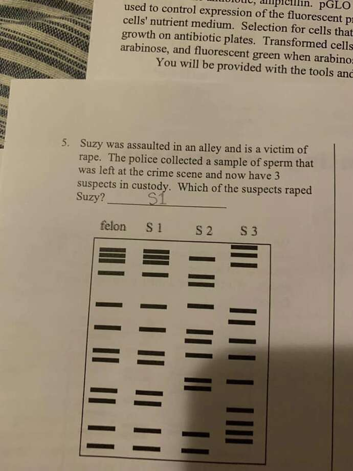 Klein ISD has removed a controversial homework assignment from a 9th-grade biology class after parents expressed outrage over a question that asks students to identify a rape suspect with DNA samples. Photo: Courtesy Stephanie Webster Kirkpatrick