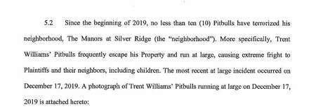 "In the lawsuit against Williams and the property association, plaintiffs Jerry Flowers and Linda Flowers request that a Fort Bend County court remove Williams' ""illegal, backyard Pitbull commercial enterprise"" and prevent the NFL star from continuing his alleged backyard business ""Silver Bully Gang."" Photo: Fort Bend County"