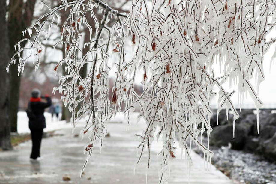 Branches are covered with ice in Evanston after a weekend winter storm moved through the state. Forecasters say west-central Illinois could see another blast of sleet and snow to end this week. Photo: Nam Y. Huh | AP