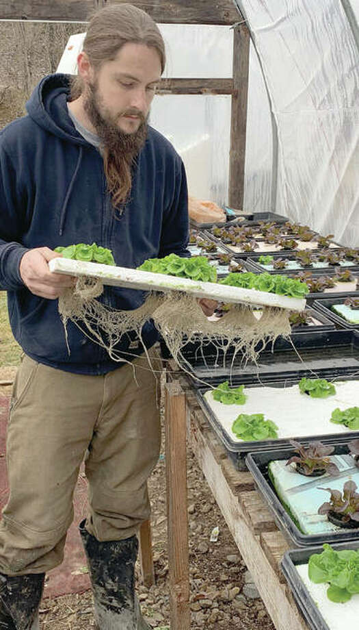 Michael Meyer, co-owner of Mueller Family Farms, inspects hydroponic lettuce the farm uses to create a specialty spring mix called salanova. Photo: Marco Cartolano | Journal-Courier