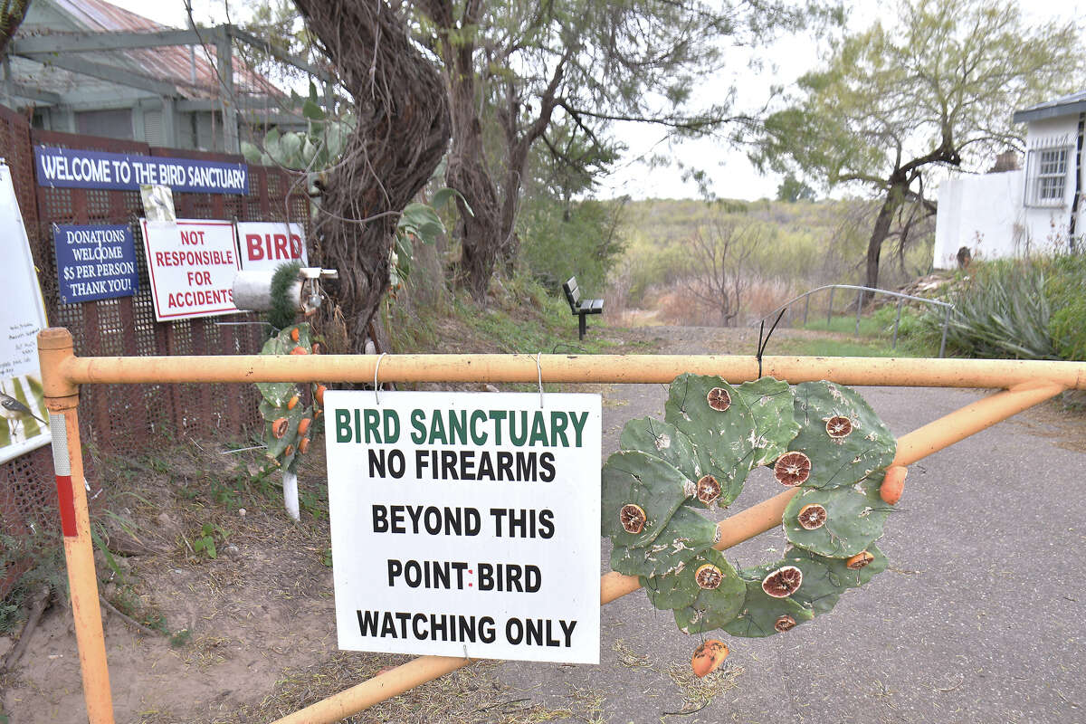 Shown is the path down to the bird sanctuary, between the town of San Ygnacio and the Rio Grande. It's a popular destination for birders.