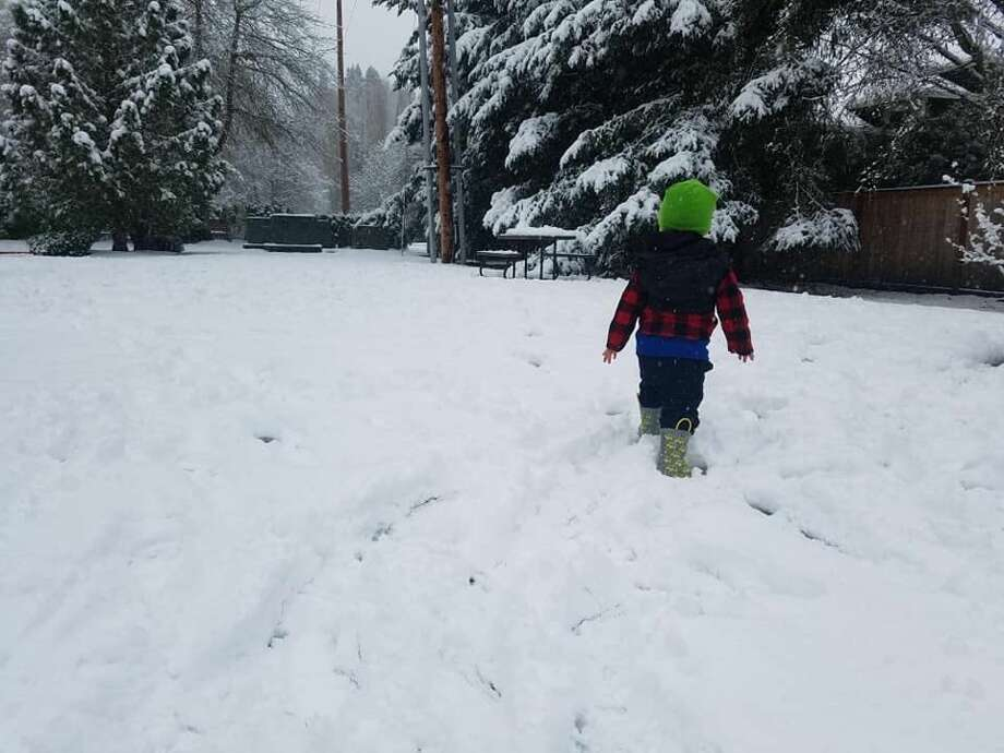 Playing in the snow in Kirkland on Tuesday, Jan. 14. Photo: By Mike Harvey/Special To SeattlePI