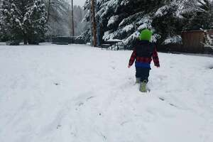 Playing in the snow in Kirkland on Tuesday, Jan. 14.
