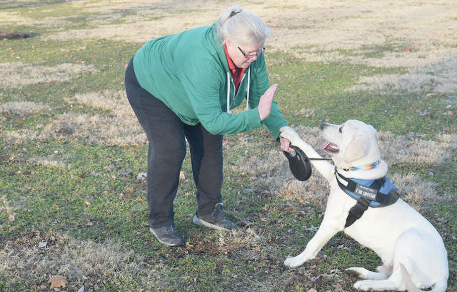 Hilda Six of South Jacksonville trains her dog, Gus, to shake hands Tuesday during a walk. Photo: Marco Cartolano | Journal-Courier