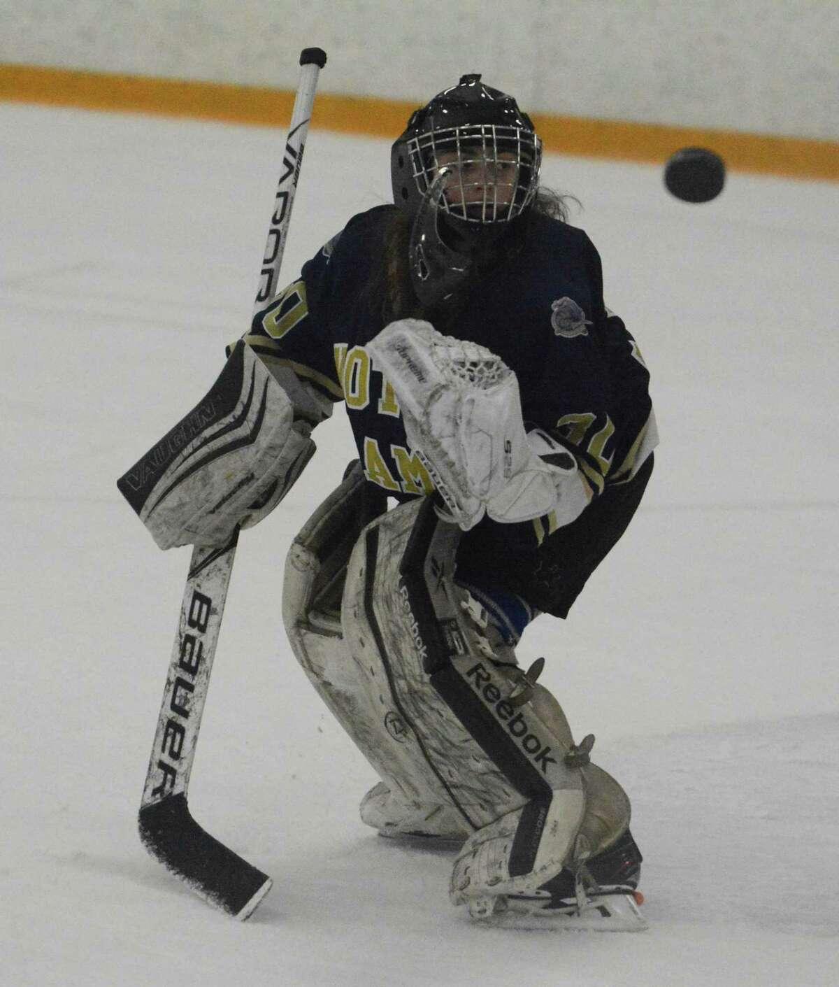 Notre Dame-Fairfield co-op goalie Bethany Karp.