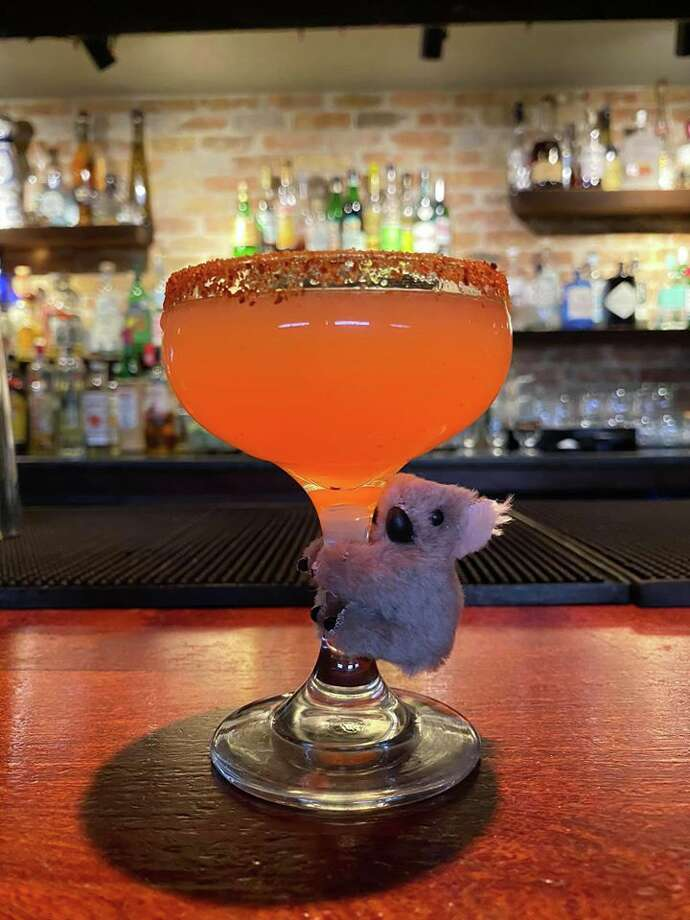 The Green Lantern, a speakeasy-style bar on the North Side, is selling a new drink through the end of February with the proceeds going to the Australian Red Cross and thePort Macquarie Koala Hospital. Photo: Courtesy