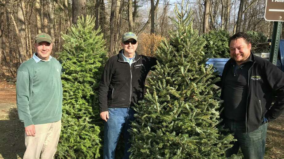 A local environmental group, Planet New Canaan recently picked up 20 Christmas trees from town residents, and dropped them off at Merwin Meadows in the state of Connecticut Town of Wilton for the Mianus Chapter of nonprofit organization Trout Unlimited. The trees will be placed in the Norwalk River, providing habitat for the trout fish, turtles and other aquatic animals. Pictured are: Victor Alvarez, Dan O'Hara of Trout Unlimited, and Carl Mason, who serves on the New Canaan Park and Recreation Commission. Photo: Contributed Photo