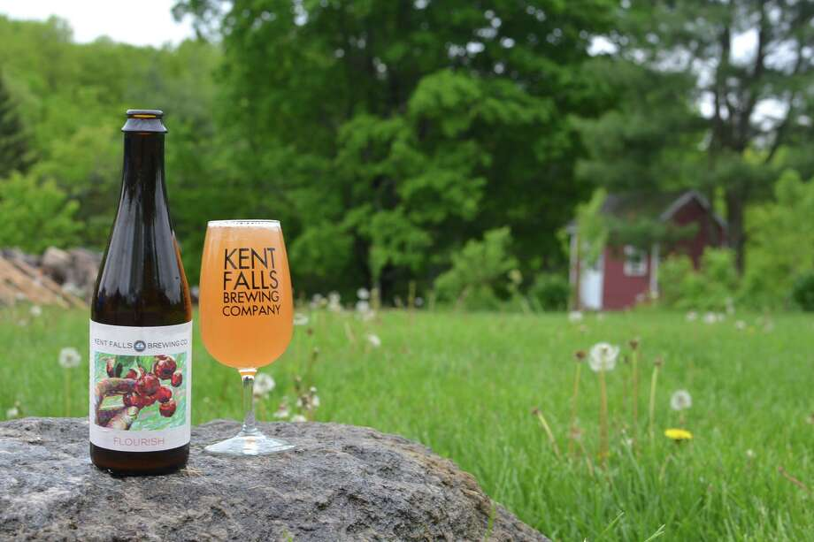 Hodge Library in Roxbury will host a Pop Up Pub with Kent Falls Brewing Co., for a benefit, on Friday, Jan. 24 from 6 to 9 p.m. Photo: Minor Memorial Library / Contributed Photo