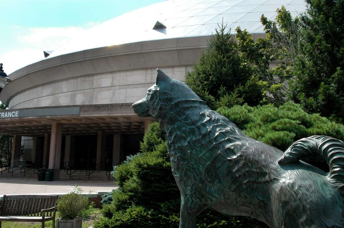 The UConn Husky statue in front of the Harry A. Gampel Pavilion at the University of Connecticut on the campus in Storrs, Conn.