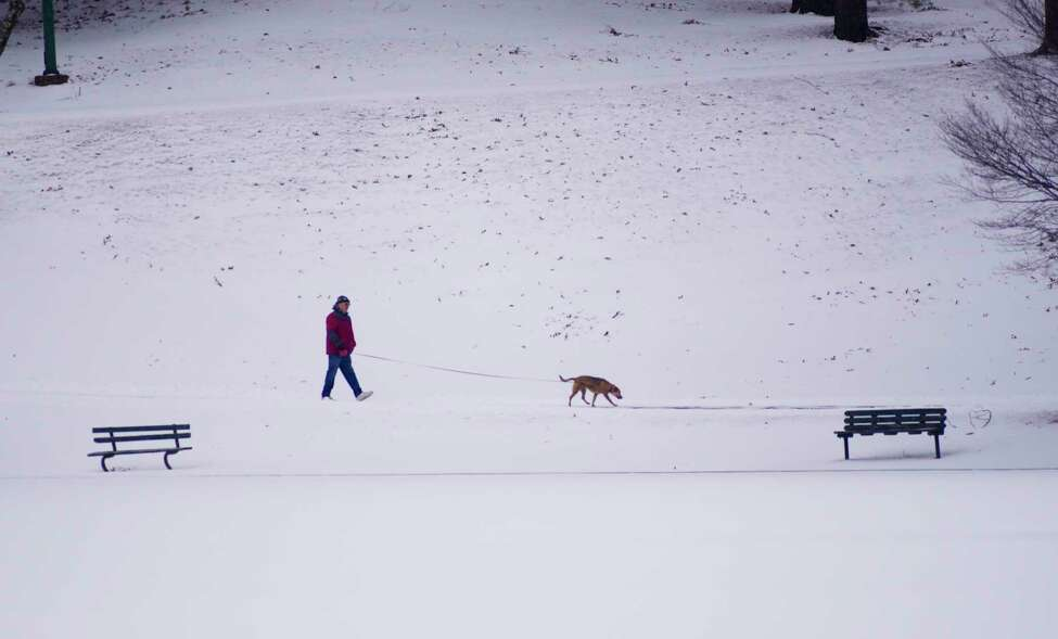 A man walks a dog around the lake at Central Park on Sunday, Jan. 19, 2020, in Schenectady, N.Y. (Paul Buckowski/Times Union)