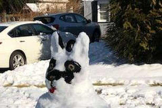 """Inspired by their """"grand dog,"""" the Hansons used the newly fallen snow to create this snow dog Sunday, Jan. 19, at their Toas Street property. Darlene Hanson puts the finishing touches on the creation, which is modeled after Ganon, their French bulldog grand dog."""