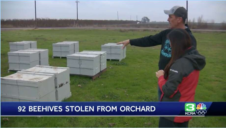Someone stole nearly 100 beehives from an orchard just south of Yuba City in Jan. 2020. Photo: KCRA
