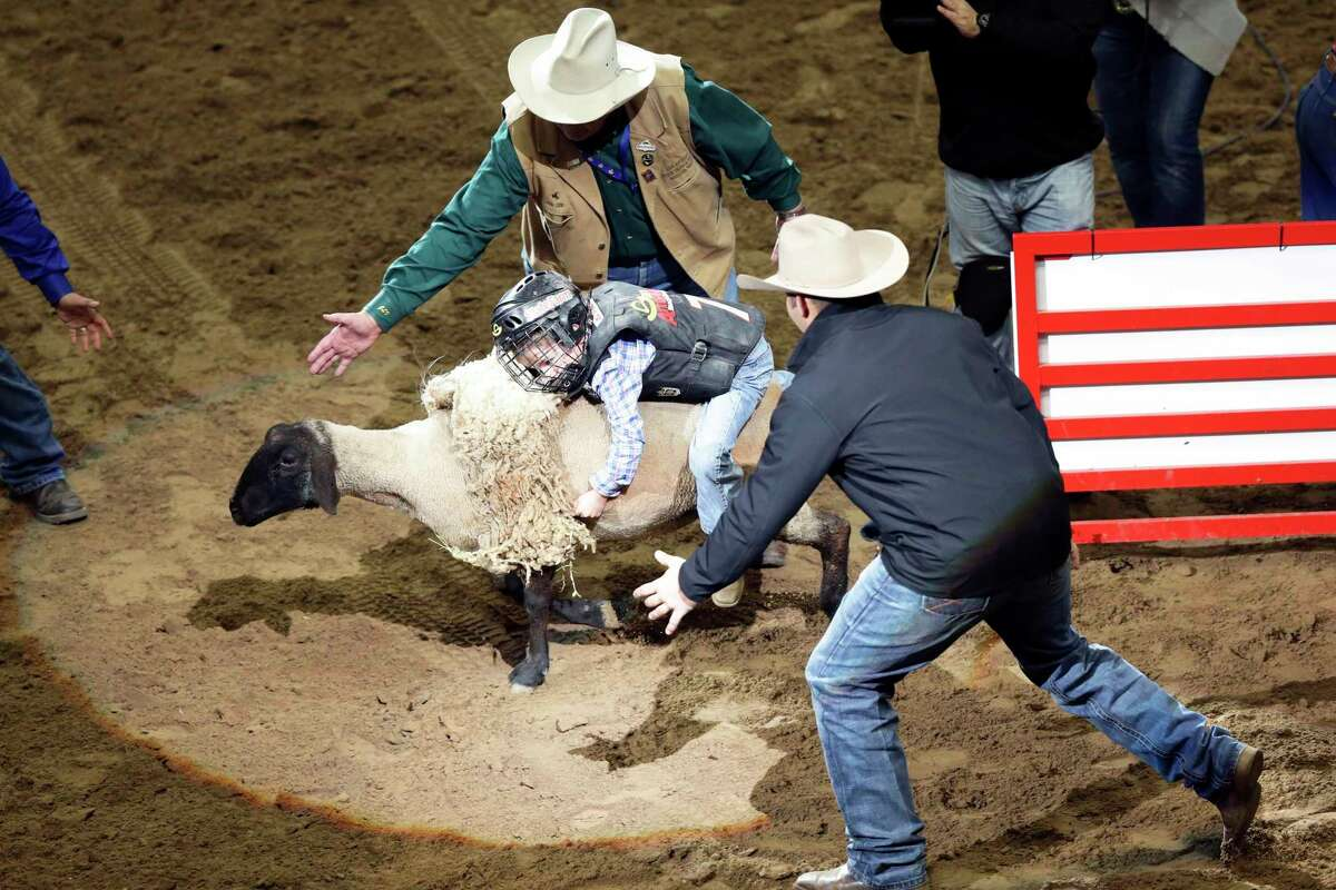 Young riders try to stay up for six seconds in mutton busting.