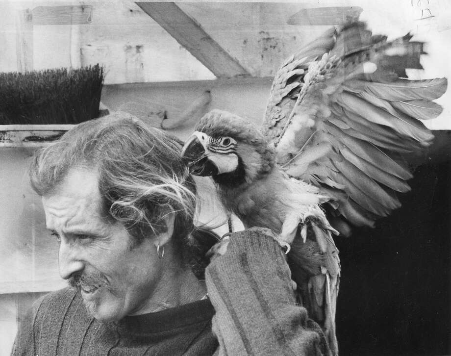 "Alex De Renzy made an estimated 200 adult films before dying at the age of 65 in 2001. His most important was ""Pornography in Denmark."" This July 16, 1973 photo shows him with his pet macaw, Jose. Photo: Barney Peterson, The Chronicle"