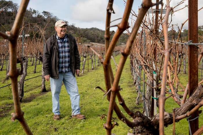 Napa vintner Igor Sill poses for a portrait among the grapevines of Sill Family Vineyards in Napa, Calif. Friday, Jan. 17, 2020.