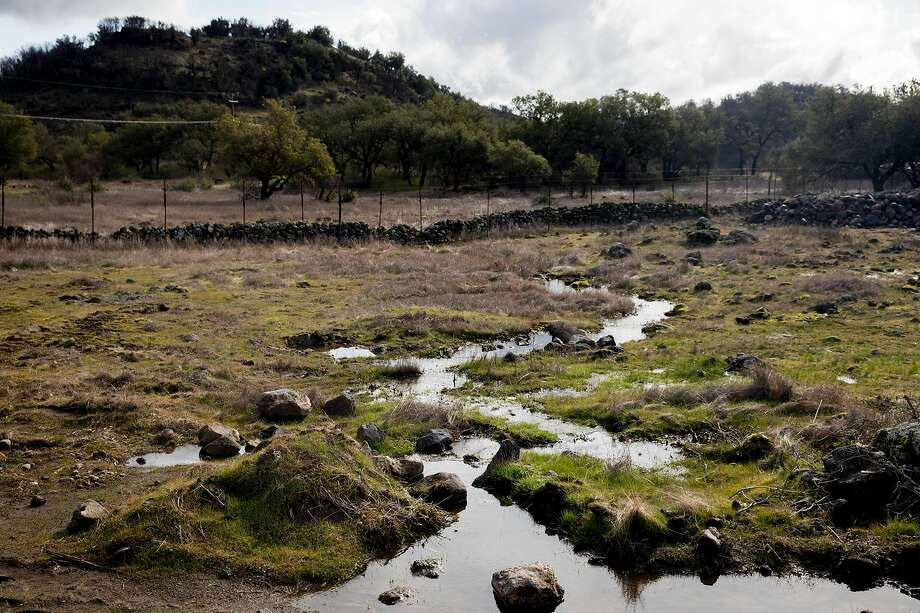 A trickling stream flows downhill from Sill Family Vineyards on Atlas Peak in Napa Valley. Sill has wetlands on his property, but he maintains that he did not have any vernal pools. Photo: Jessica Christian / The Chronicle