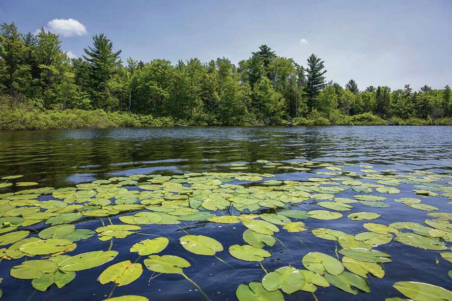 The Grand Traverse Regional Land Conservancy is working on a variety of projects, including the creation of the Upper Manistee Headwaters: The Milock Family Preserve in 2020. (Courtesy photo)