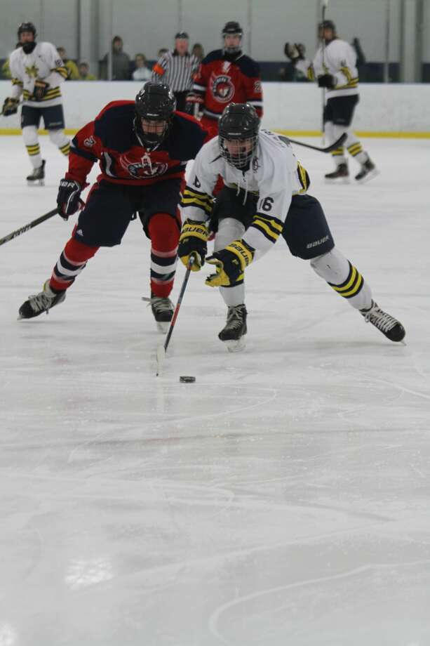 The Manisteeco-op hockey team fell to the Traverse City Bay Reps on Tuesday, Jan. 21, 2020. Photo: Dylan Savela/News Advocate