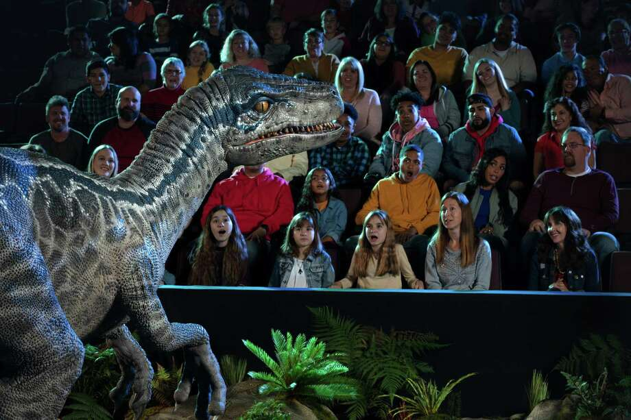 "Tickets are on sale for the ""Jurassic World Live Tour"" at Bridgeport's Webster Bank Arena March 5-8. Photo: Regan Communications Group / Contributed Photo"