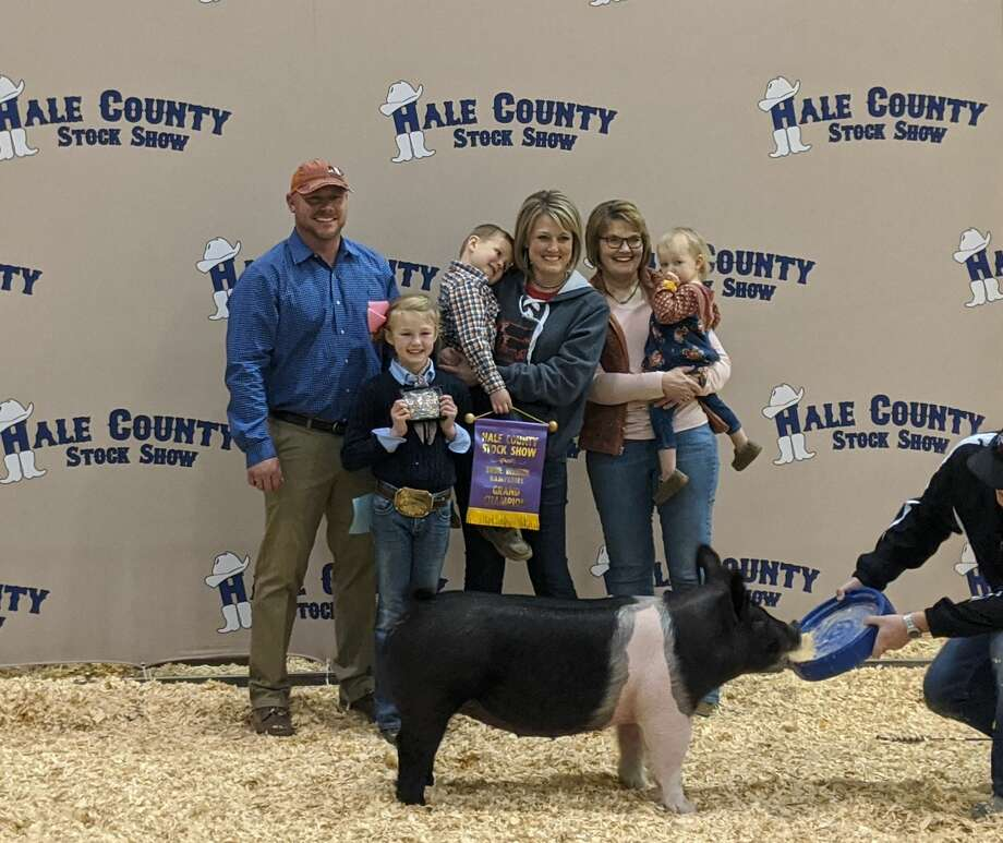 Bryleigh Beyers, Abernathy 4-H – Grand Champion Swine Photo: Courtesy Photo/Hale County AgriLife Extension Office