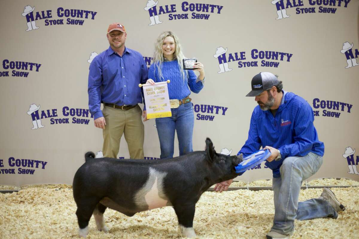 Cash Martin, Abernathy FFA - Reserve Grand Champion Swine