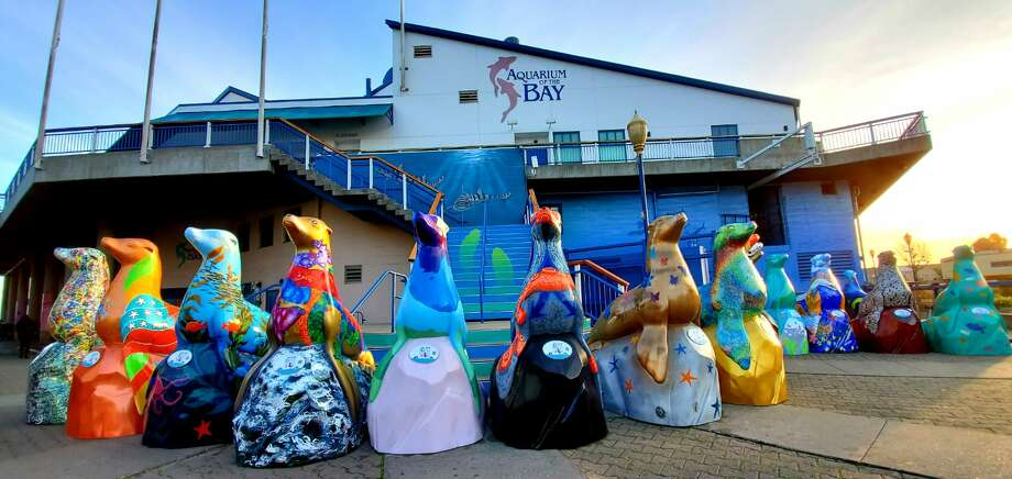 Thirty sea lion sculptures will make an appearance throughout San Francisco as part of a yearlong public art installation celebrating the 30th anniversary of the sea lions' takeover of Pier 39. Photo: Paul Nakamoto/Aquarium Of The Bay