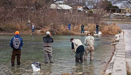 Anglers encircle the spot where moments before a fish transport truck stocked about 1,000 rainbow trout just off the low-water crossing at Blanco State Park.