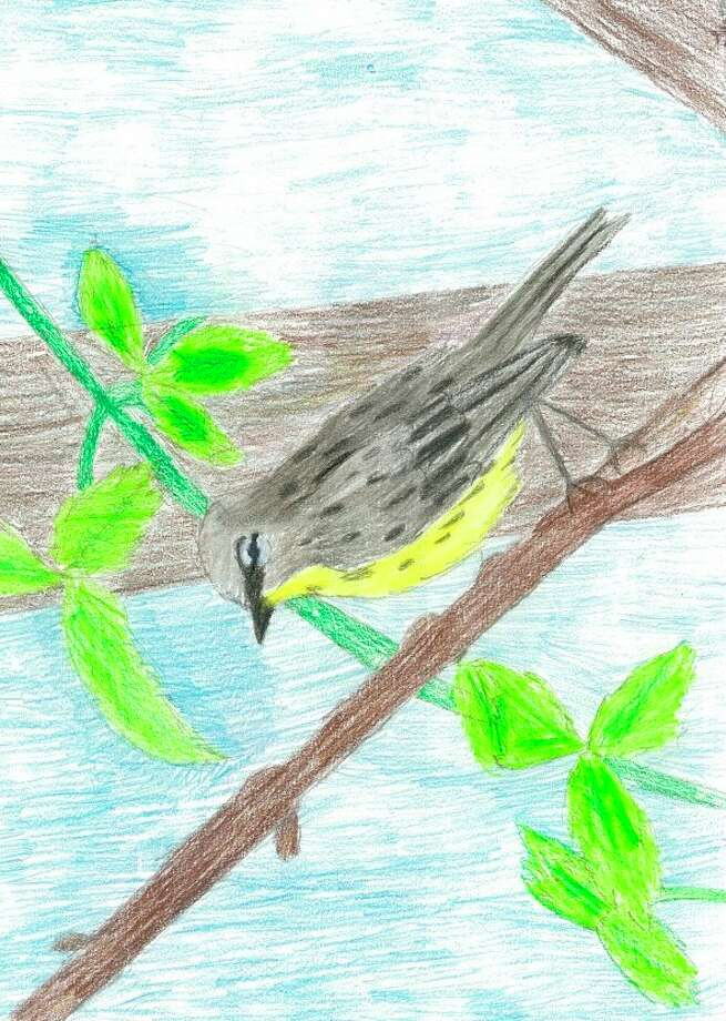 The winner of the 2019 Young Artists Contest, a piece by Grayling fifth-grader Tierney Hartman, is pictured. (Courtesy photo)