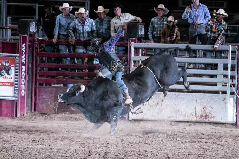 Conroe Bull Mania 2020 was granted $15,000 by the city of Conroe for its upcoming event. Photo: Cody Bahn, Houston Chronicle / Staff Photographer / © 2018 Houston Chronicle