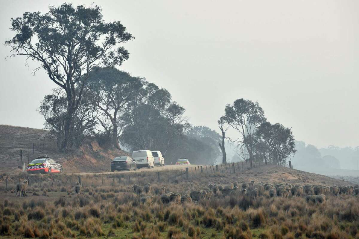 New South Wales forensic officers and a coronal van depart the site of a tanker plane crash Friday in Peak View, Australia. Three American firefighters died after their C-130 water tanker plane crashed while battling a bushfire near Cooma. Coulson Aviation, the Canadian operator of the C-130 aircraft, grounded their fleet as a mark of respect for the victims and to reassess safety conditions.