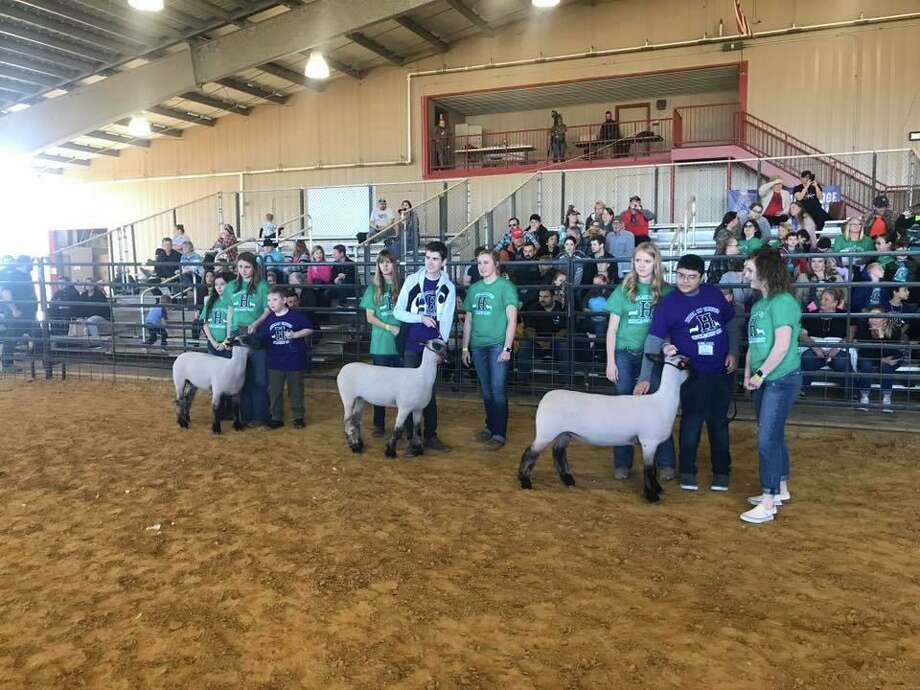 Huffman ISD special education life skills students showed their animals with the help of volunteers from Hargrave High School at the 2020 Huffman ISD Livestock Show Unified Show at the Huffman ISD Agriculture Barn on the afternoon of Jan. 24 Photo: Huffman ISD