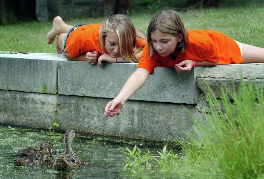 Stephanie Paproski, 20, left, and Julielle Topolski, 9, both from Newtown, are the image of summer leisure as they feed ducks on a hot day at the Ram Pasture in Newtown, August 3, 2010. Photo: Chris Ware / The News-Times