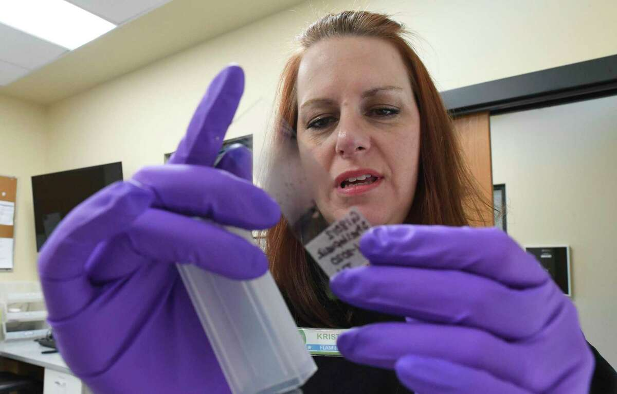Kristie Gonyea, veterinary administrator at the San Antonio Zoo, looks at a slide with a blood sample from a glass lizard. The retired senior master sergeant was in the Air Force for 25 years.