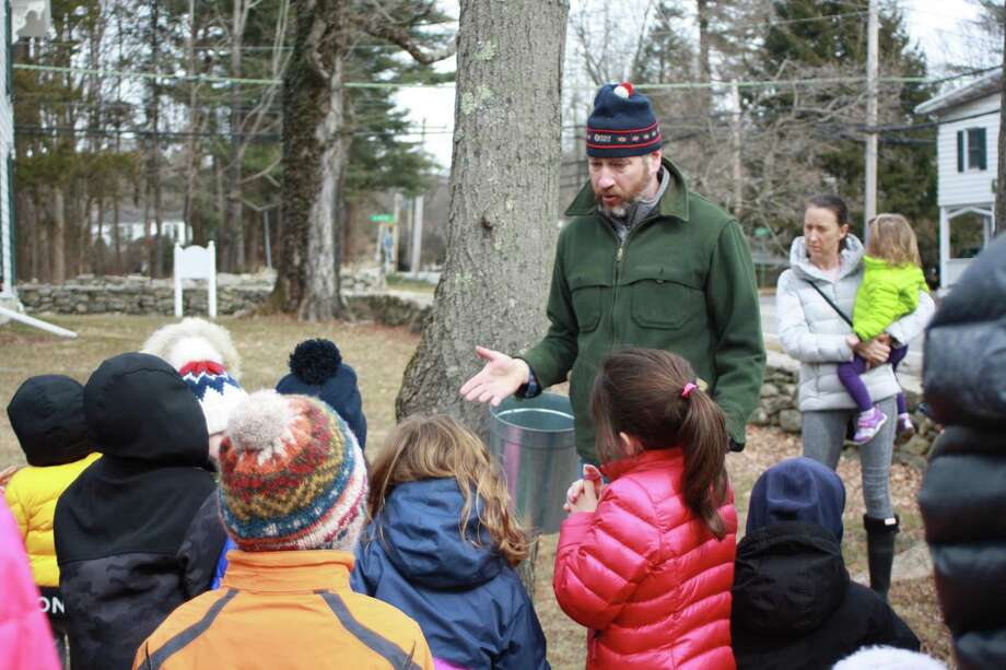 Maple syrup demonstrations will be on tap at Greenwich Land Trust's Maple Sugar Day Feb. 22. Photo: GLT / Contributed Photo
