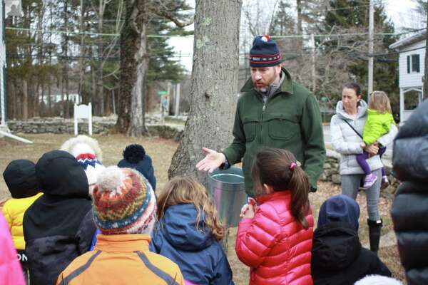 Maple syrup demonstrations will be on tap at Greenwich Land Trust's Maple Sugar Day Feb. 22.
