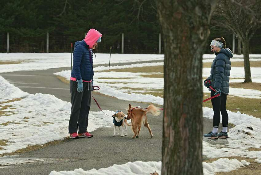 A couple of pedestrians stop so their dogs can greet each other as they take a walk at The Crossings of Colonie on Monday, Jan. 27, 2020 in Colonie, N.Y. (Lori Van Buren/Times Union)