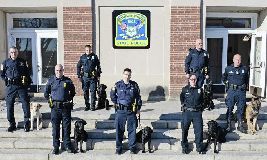 Members of the Connecticut State Police 209th Narcotics K-9 Class graduated Friday during a ceremony in Meriden. Photo: Contributed Photo